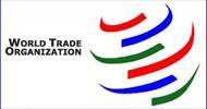 تحقیق و پاورپوینت سازمان تجارت جهانی